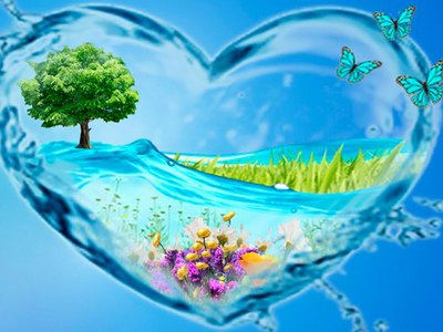 Вода — основа жизни